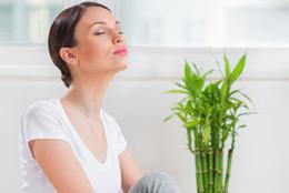 therapies zen